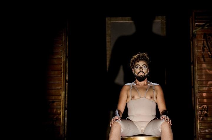"""""""Quem Tem Medo de Travesti"""" (foto: Luiz Alves)"""